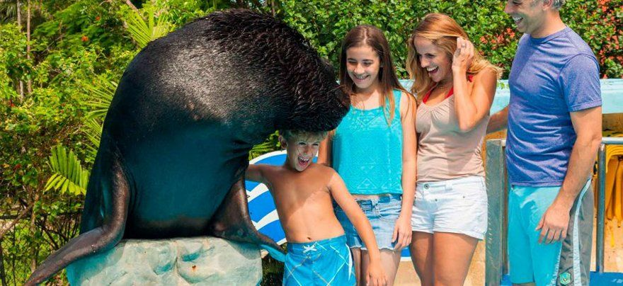 shows de animales y tradiciones de Punta Cana