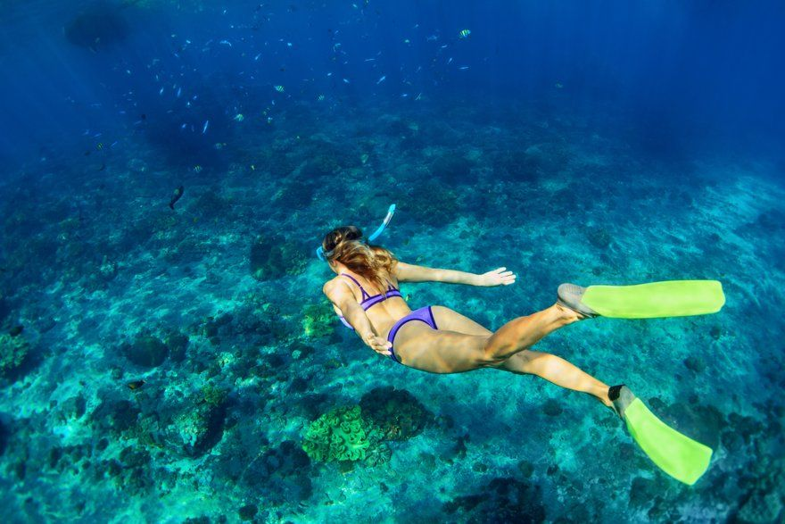snorkel-in-punta-cana