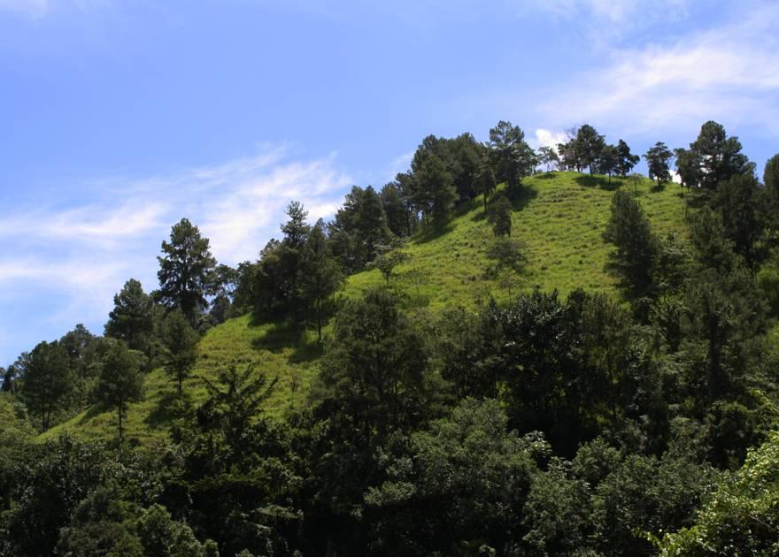 Montaña de Jarabacoa