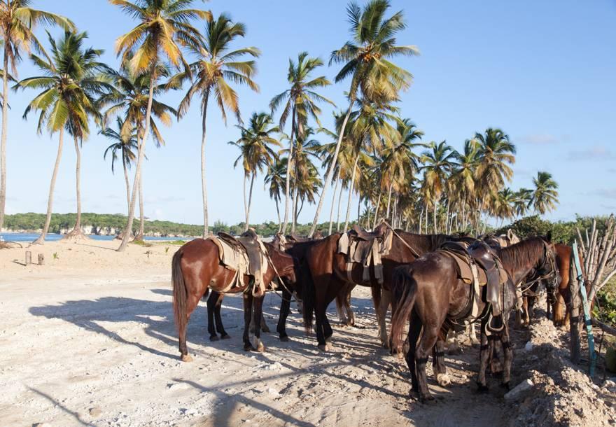 montar a caballo en Punta Cana