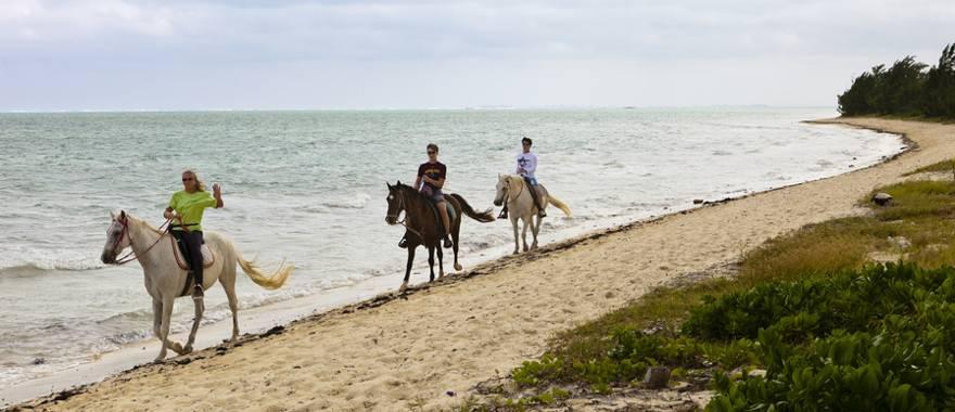 Equitación en Punta Cana