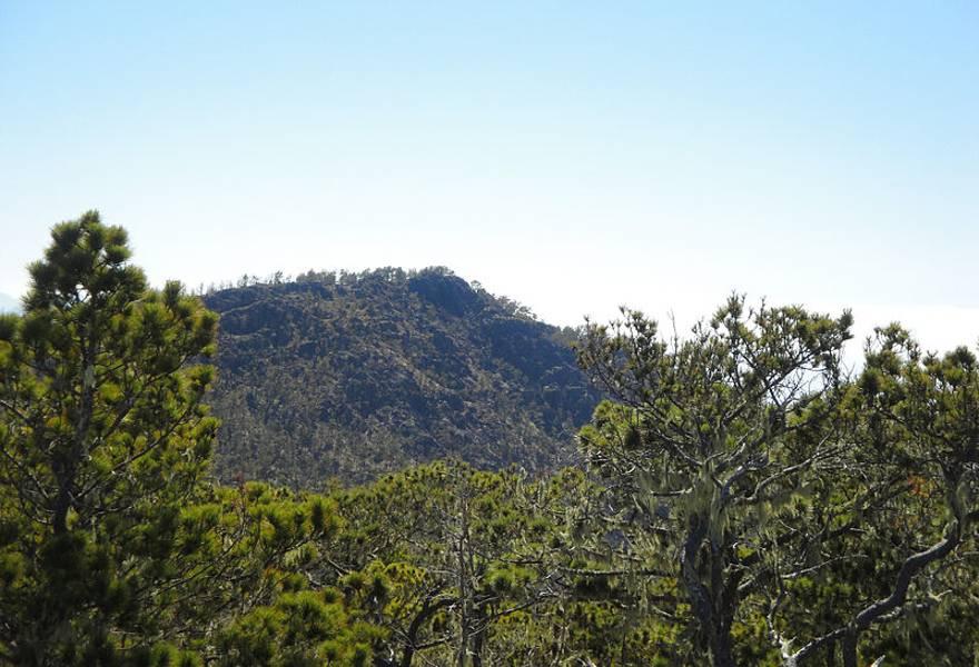 Montagne de Jarabacoa
