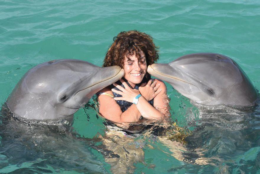 Actividades con delfines en Punta Cana